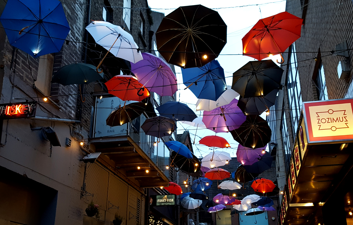 Umbrellas on display in Temple Bar, Dublin