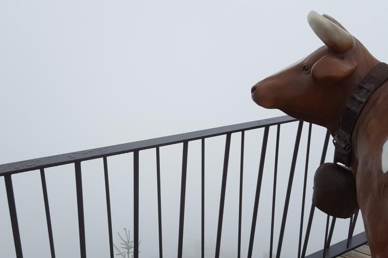 Viewpoint at Harder Kulm above Interlaken, Switzerland