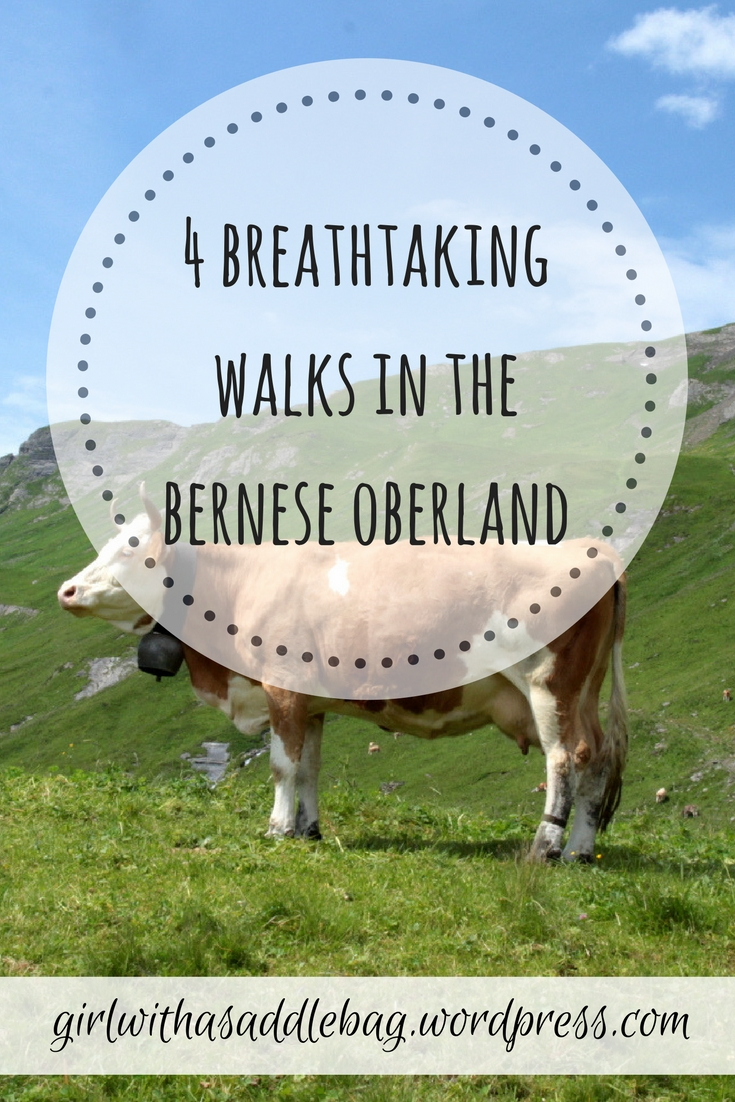 4 breathtaking walks in the Bernese Oberland, Switzerland