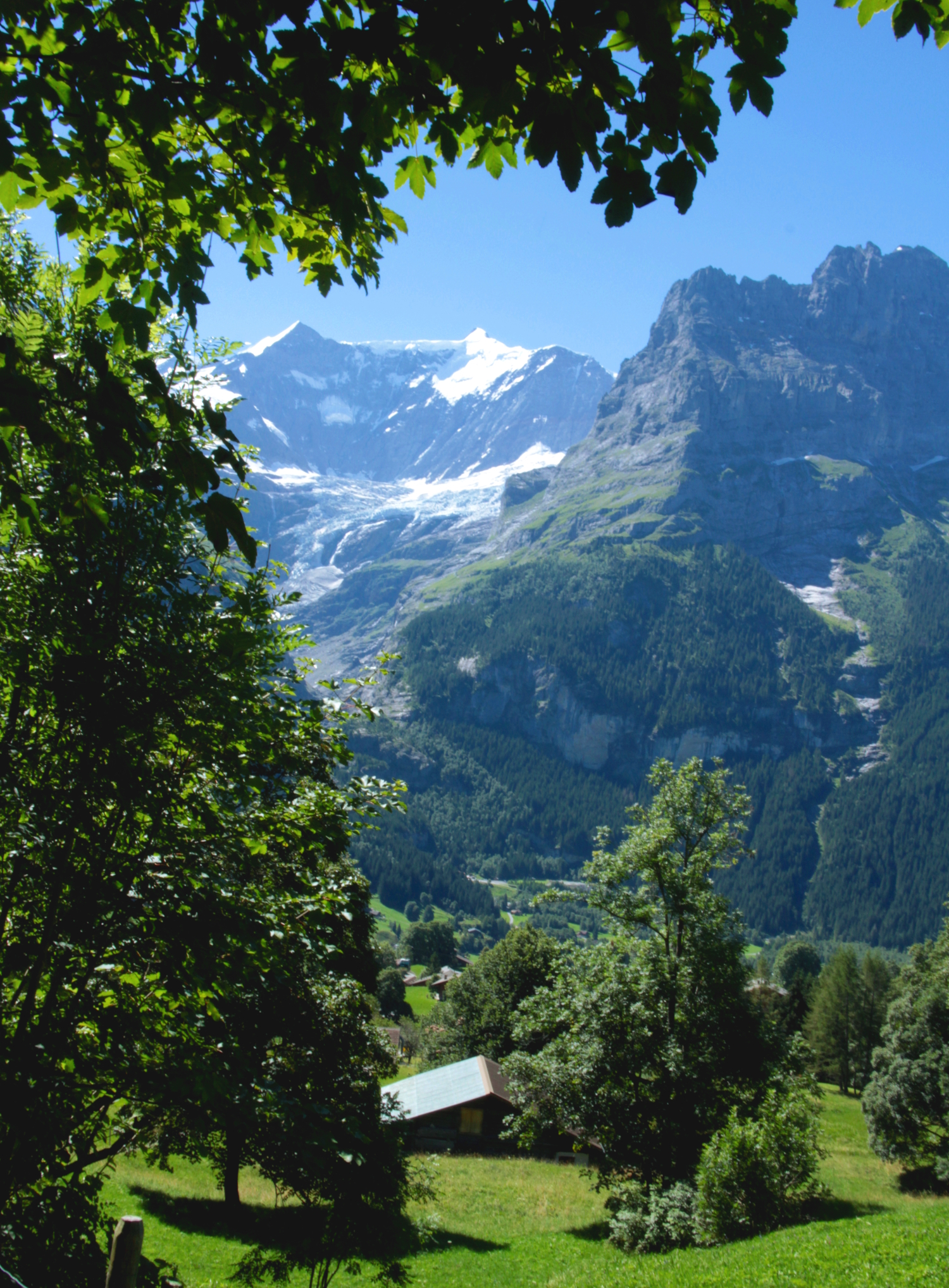 Walking from Grindelwald to First allows you to discover fantastic views of the majestic Eiger