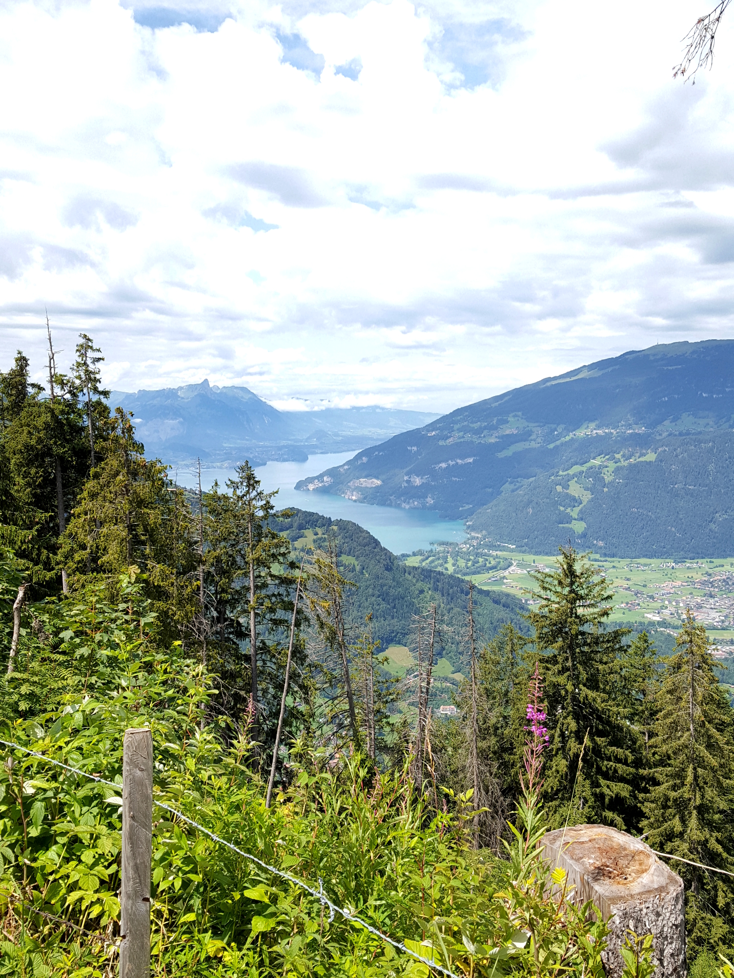 View over Interlaken and Lake Thun on a hike to Schynige Platte in the Bernese Oberland