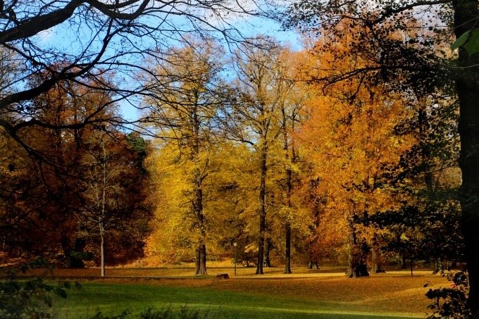 Autumn glories: Northern European destinations perfect for a city break now | Hagapark, Stockholm, Sweden | Travel guide | City guide | Girl with a saddle bag blog