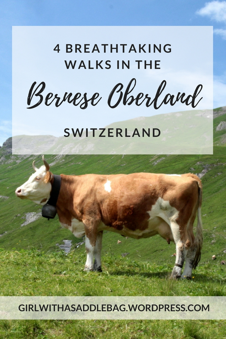4 breathtaking walks in the Bernese Oberland, Switzerland | Travel guide | Girl with a saddle bag blog