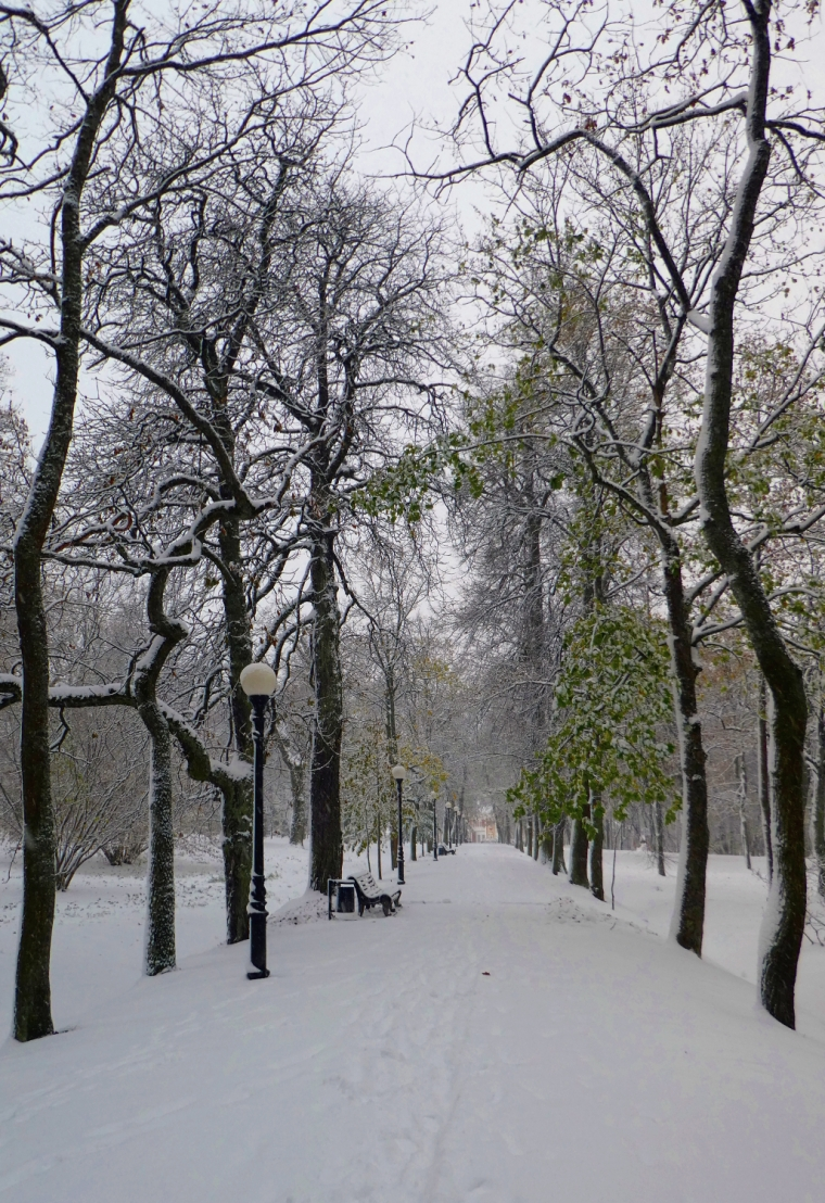 Kadriog park in Tallinn, Estonia, in the snow | Travel guide | City guide | Girl with a saddle bag blog