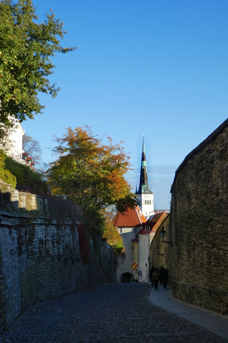 Gateway to Toompea Hill in Tallinn's old town | Travel guide | City guide | Girl with a saddle bag blog